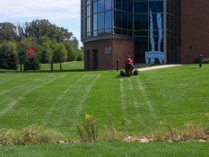 Mowed Lawn Outside Commercial Building